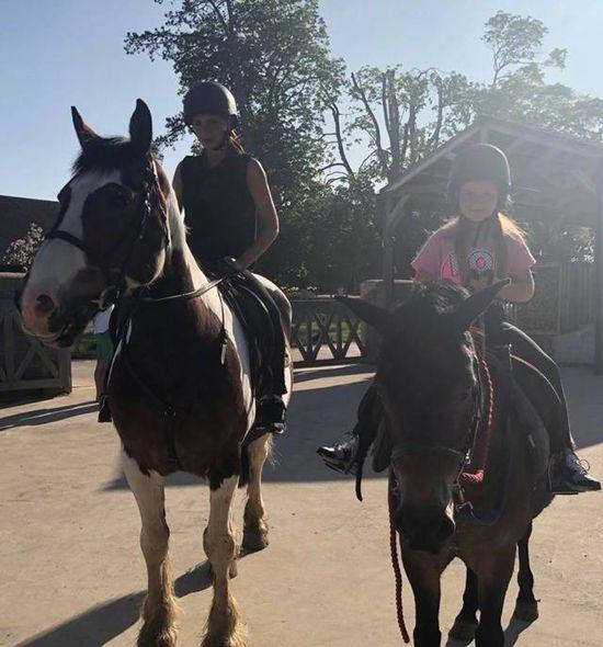 贝克汉姆夫妇花7000英镑买一匹小马作为小七生日礼物Mon Jul 02 2018 13:20:24 GMT+0800 (中国标准时间)