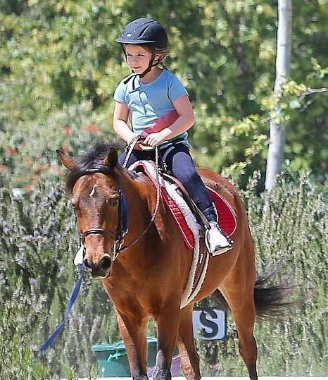 贝克汉姆夫妇花7000英镑买一匹小马作为小七生日礼物Mon Jul 02 2018 13:20:09 GMT+0800 (中国标准时间)