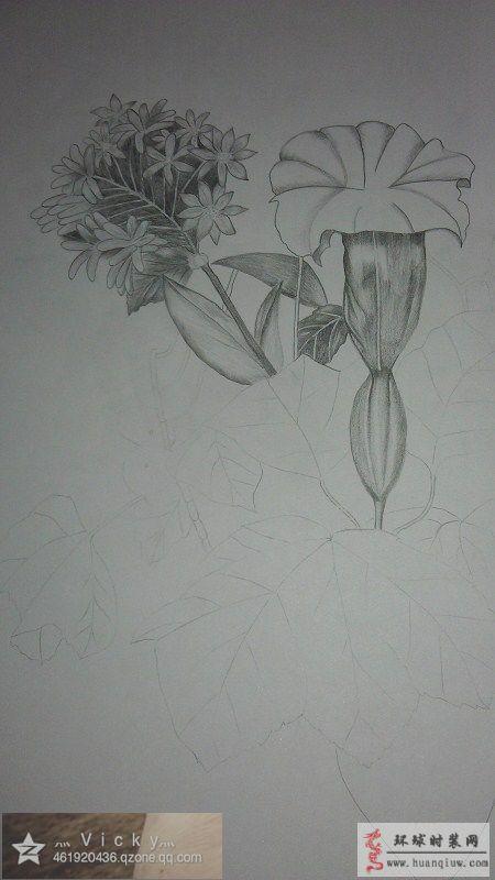 铅笔画花卉-vicky莹莹的绘画作品