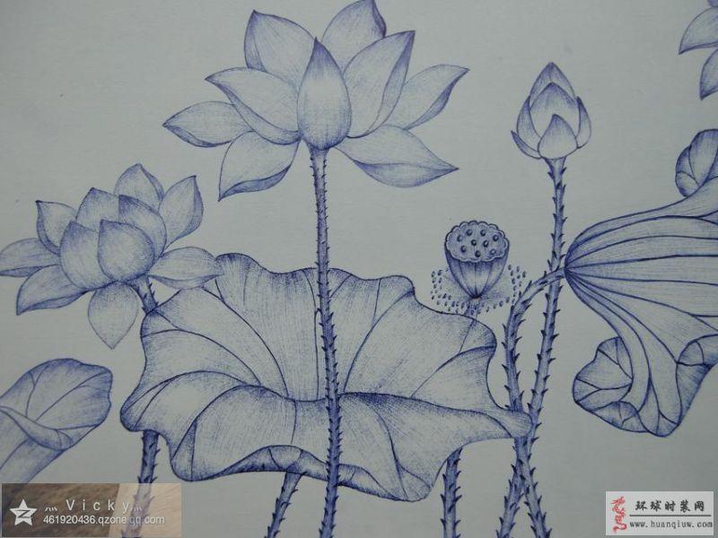 荷花-vicky莹莹的绘画作品